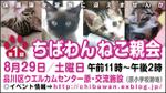 Nekooyakai_320x180