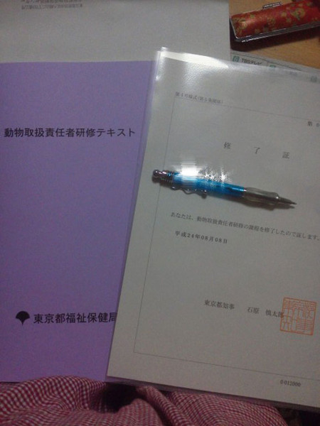 Nec_0365_2